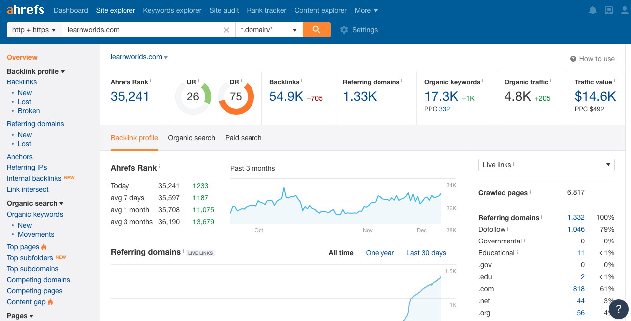 Ahrefs Site Explorer Overview Report