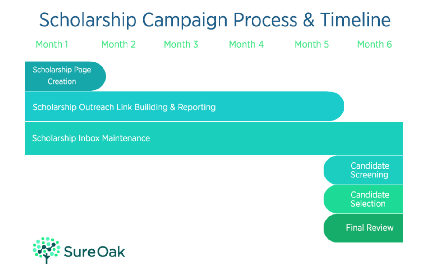 Sure Oak link building process